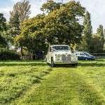 classic clara arrives at rookery meadow